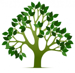 Global Tree Care AB